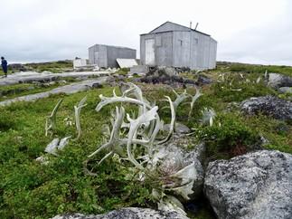 Kuugaaluk: sur les traces de nos ancêtres
